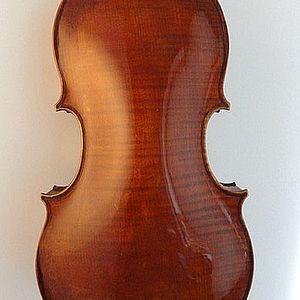 Viola 2