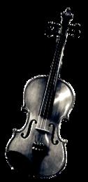 Violine & Geige