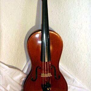 Violine in Gitarrenform 1