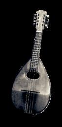 Laute & Mandoline