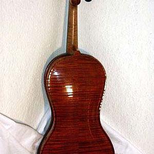 Violine in Gitarrenform 2